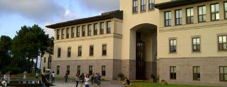 Koç Üniversitesi is one of Universities in Turkey.