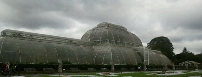 Royal Botanic Gardens is one of London.