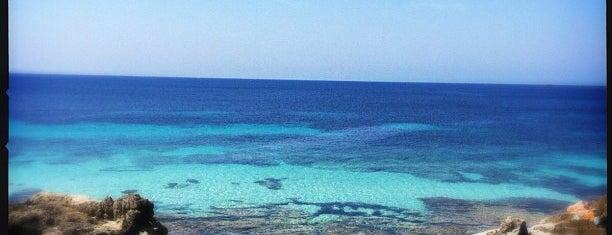 Sa Trinxa is one of Ibiza - Summer 2013.