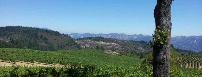 Pride Mountain Vineyards is one of Stevenson Favorite Wineries.