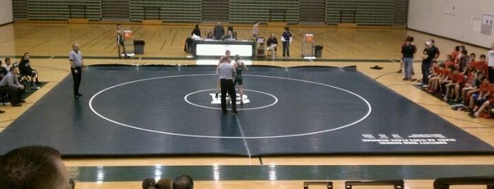 Bartlett High School is one of High Schools I Referee.