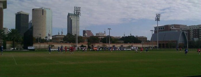 UT Intramural Fields is one of Best of South Tampa Outdoors.