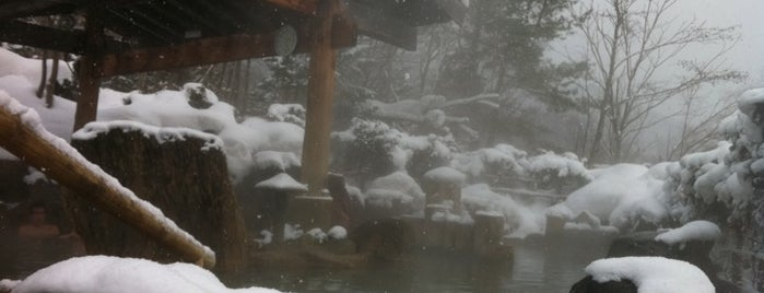 Hoheikyo Onsen is one of CTS.