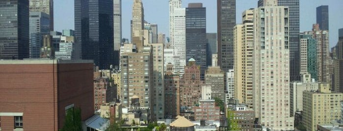 Dumont NYC, an Affinia Hotel is one of Pet Friendly Destinations.