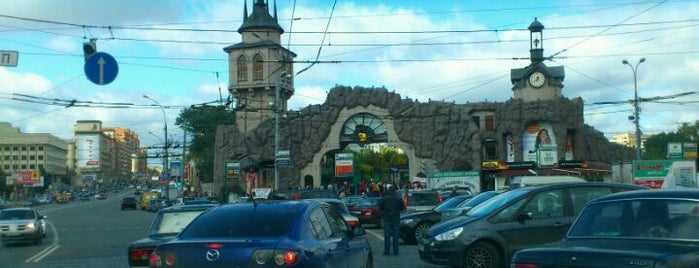 Moscow Zoo is one of A local's guide: 48 hours in город Москва, Россия.