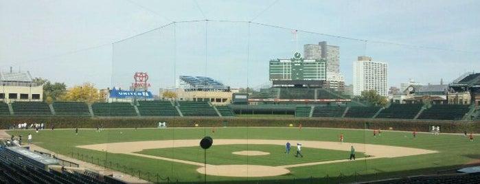 Wrigley Field is one of Major League Baseball Parks.
