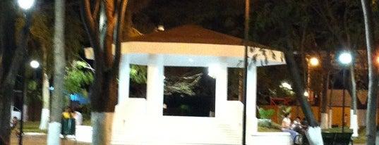 Parque de los Laureles is one of สถานที่ที่บันทึกไว้ของ Armando.