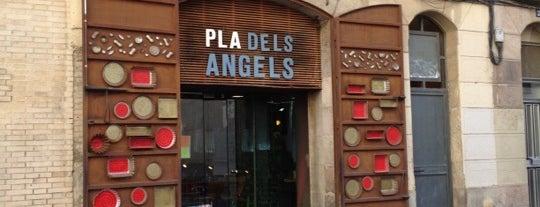 Pla Dels Angels is one of สถานที่ที่บันทึกไว้ของ Anna.