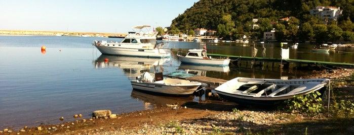 Cide Limanı is one of Karadeniz turumuz (ciddim,cordum,cezdim).