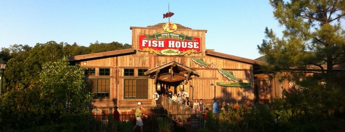 White River Fish House Is One Of The 15 Best Places For Seafood In Branson