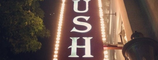 Plush is one of Top Clubs - Dallas.