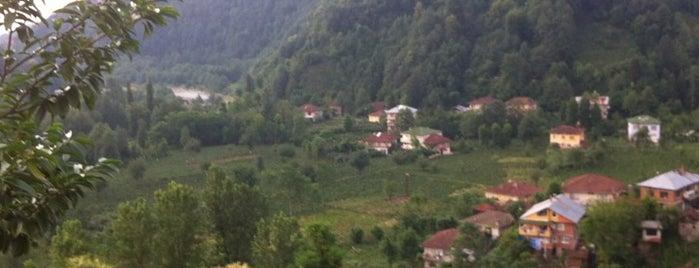 Beyazsu köyü is one of Esraさんのお気に入りスポット.