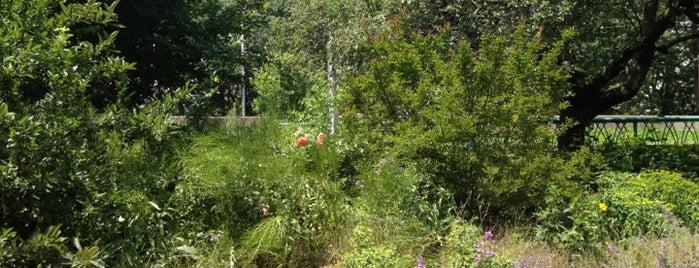 North Lawn is one of Lugares favoritos de Candice.