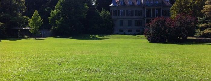 Belvoir Park is one of Zurich.