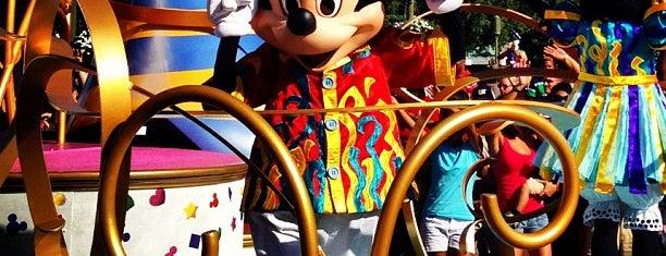 Move It! Shake It! Dance & Play It! Street Party is one of Walt Disney World.
