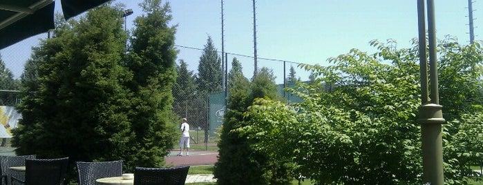 Aleksandar Palace Tennis Club Pizza Bar is one of Boyana : понравившиеся места.