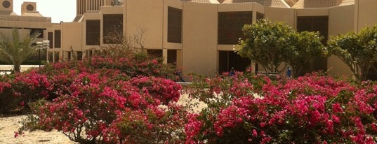 Qatar University is one of Posti salvati di Awashy.
