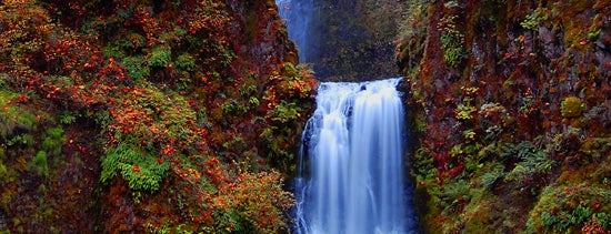 Multnomah Falls is one of My favs.