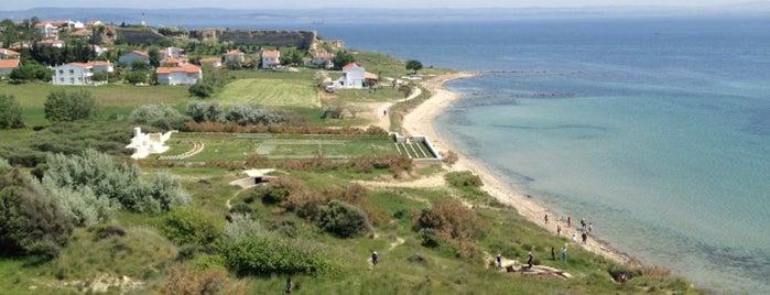 Seddülbahir is one of Canakkale.