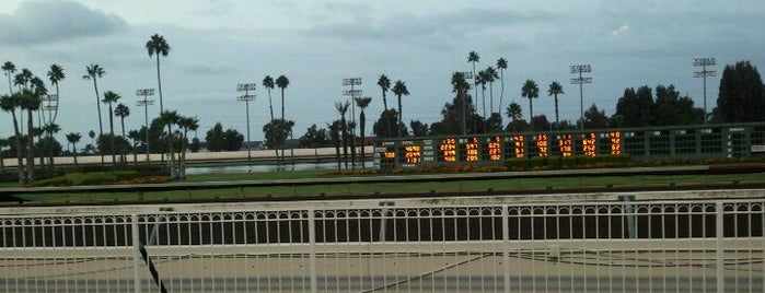 Los Alamitos Racetrack is one of OC's Best.