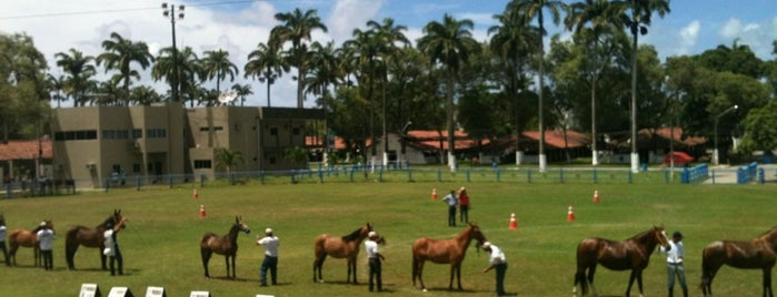 Parque de Exposições do Cordeiro is one of Orte, die Karolina gefallen.