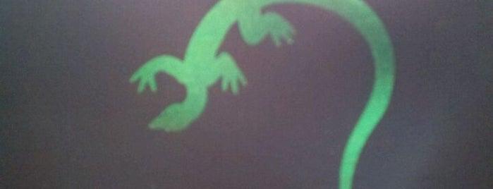 Twisted Lizard is one of carolyn'un Beğendiği Mekanlar.