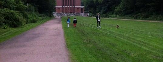 Stadtpark is one of StorefrontSticker #4sqCities: Hamburg.