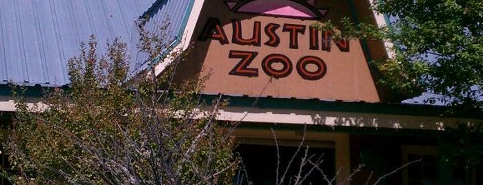 Austin Zoo & Animal Sanctuary is one of Zoos of Texas.