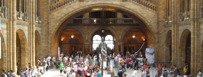 Museo di storia naturale is one of London as a local.