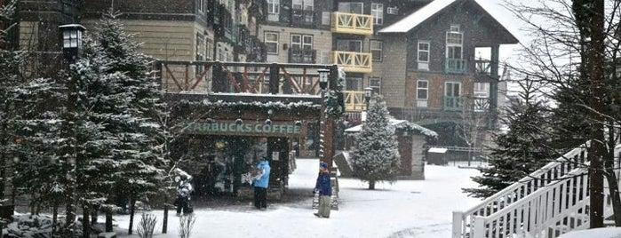 Snowshoe Mountain is one of Lugares favoritos de Terri.