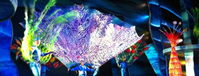 Finding Nemo - The Musical is one of Walt Disney World.
