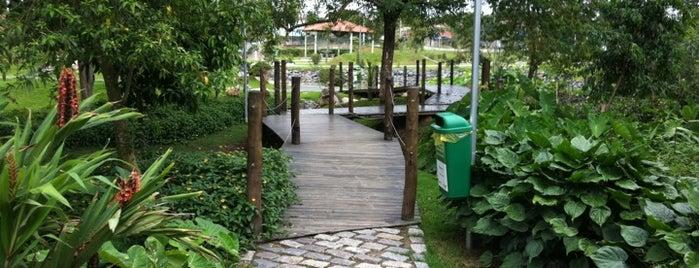 Parque da Cidade is one of Lieux qui ont plu à Maggie.