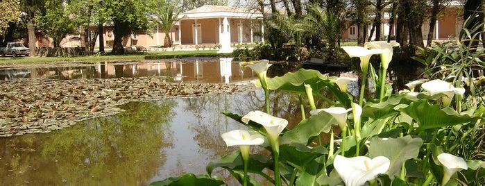 Parque Nuestra Señora de Gabriela is one of Lugares favoritos de Luis.