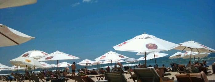 Kiwi Beach Bar is one of Maa'nın Beğendiği Mekanlar.