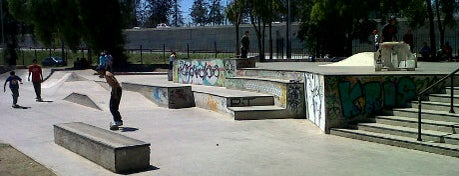 Skatepark Parque O'Higgins is one of Santiago no es Gris!.