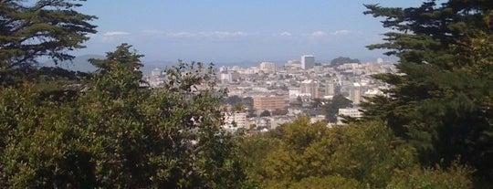 Buena Vista Park is one of My SF Bucket List.