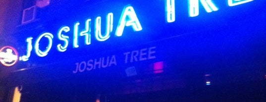Joshua Tree is one of Absolute Worst Bars in NYC.