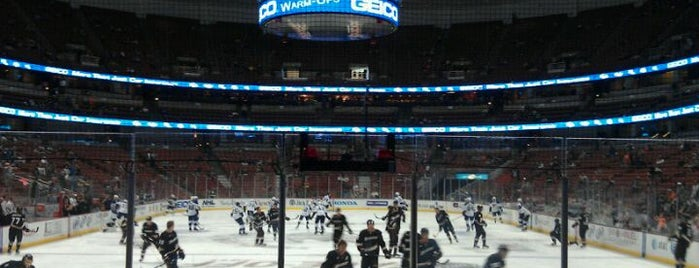 Honda Center is one of NHL (National Hockey League) Arenas.