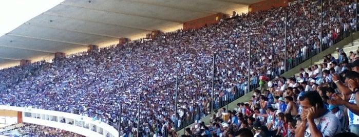 Estádio Olímpico do Pará is one of ma : понравившиеся места.