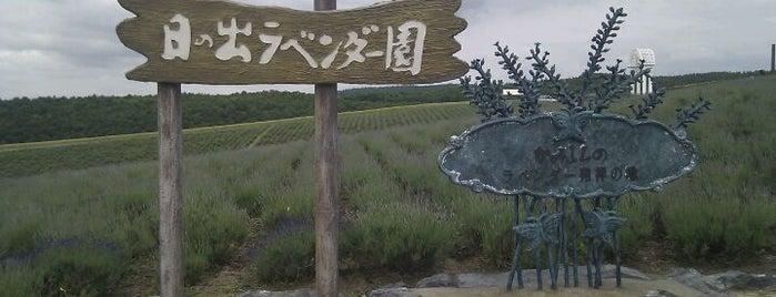 日の出公園 is one of Hokkaido.