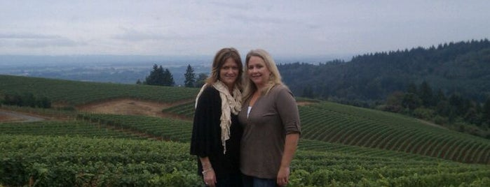 Bella Vida Vineyard is one of Dundee Hills AVA Wineries.