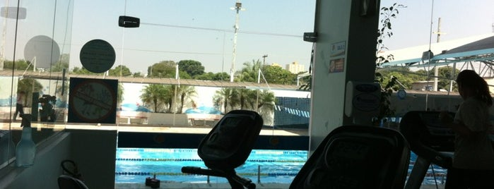 Academia Golfinho Azul is one of Posti che sono piaciuti a Guta.
