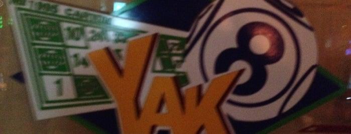 Yak is one of Tempat yang Disukai Chio.