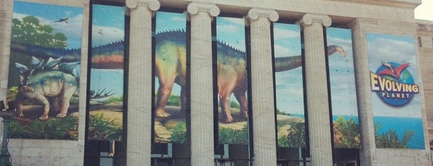 The Field Museum is one of #visitUS Chicago Tourist Must Check-into.