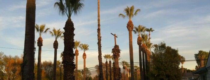 Loma Linda, CA is one of สถานที่ที่ Robert ถูกใจ.