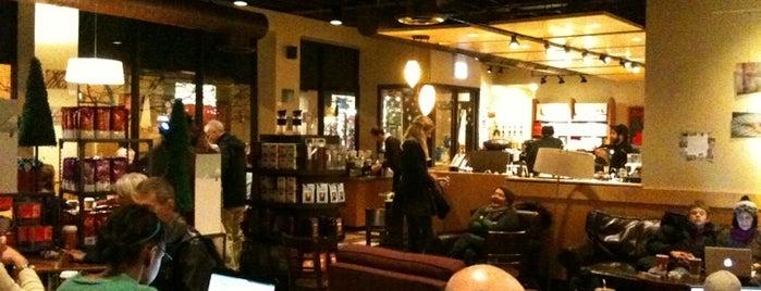 Starbucks is one of Locais curtidos por Christopher.