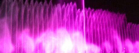 Fountains of Bellagio is one of Vegas List.