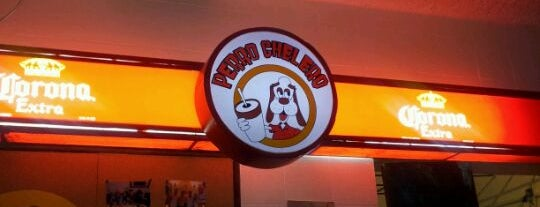 El Perro Chelero is one of Bares.