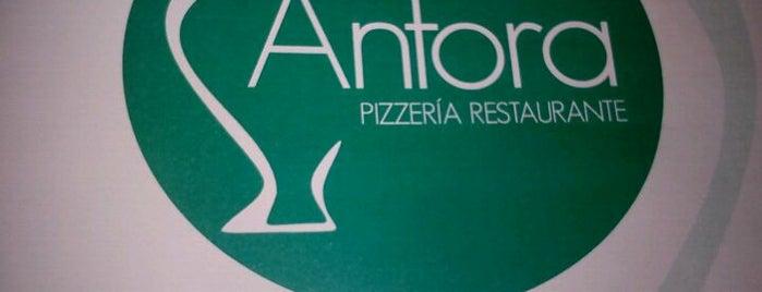 Ánfora is one of Donde Comer en Puente Genil.