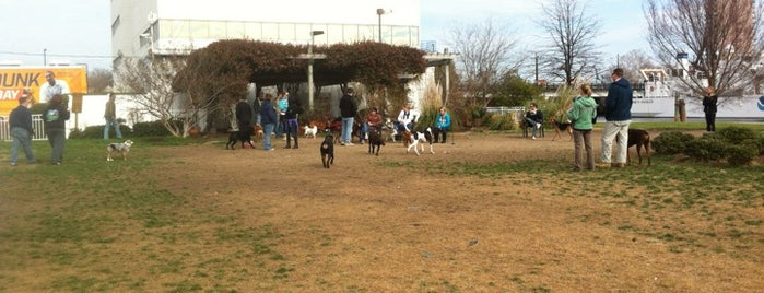 Bea Arthur Dog Park is one of va beach // to check out.